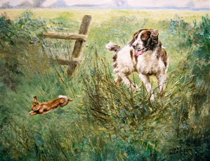 Springer and Rabbit, Henry Wilkinson, Sporting Dogs, 10x12, Westport River Gallery, Connecticut