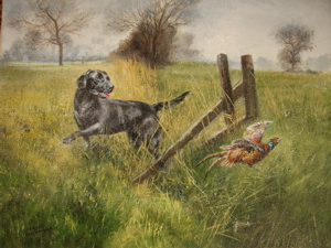 Black Labrador Chasing Pheasant, Henry Wilkinson, Sporting Dogs, 16x20, Westport River Gallery, Connecticut
