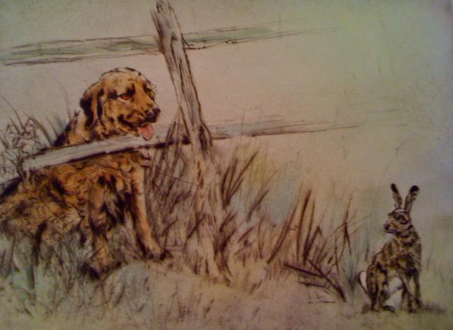 Henri Wilkinson, Golden Retriever and rabbit, Westport River Gallery, Westport, Connecticut