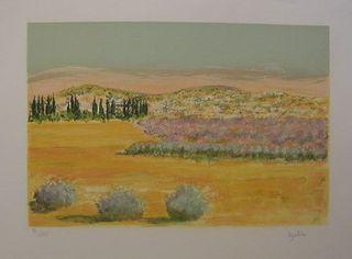 Balta Paysage