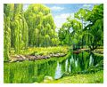 Weeping Willow River, 16x20, Westport River Gallery