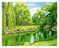 Weeping Willow River, 16x20, Westport River Gallery