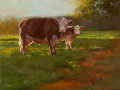 York  the Pasture  westport river gallery