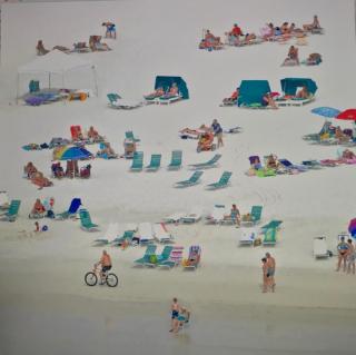 Susan Beach Bike