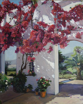 Xx Laurie Courchia Bougainvilliers et ombres. copy